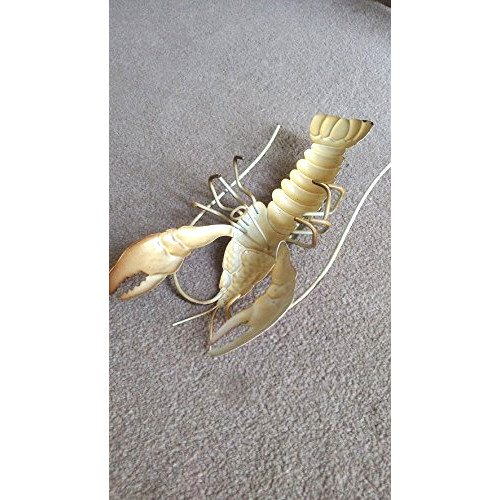 Colourful Lobster