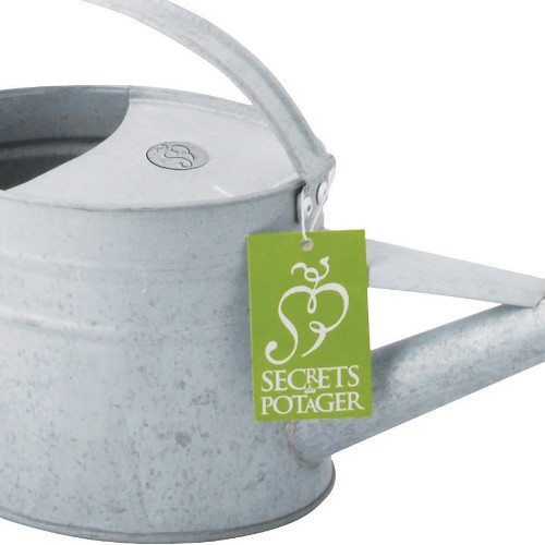 Houseplant Watering Can