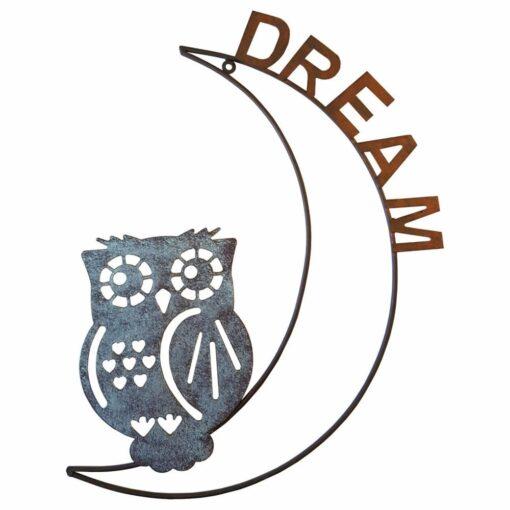 Dream Owl on Moon