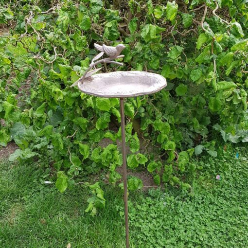 Staked Bird Feeder and Bath