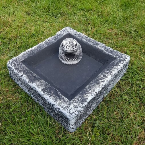 Black and White Square Bird Bath/Feeder With Free Frog
