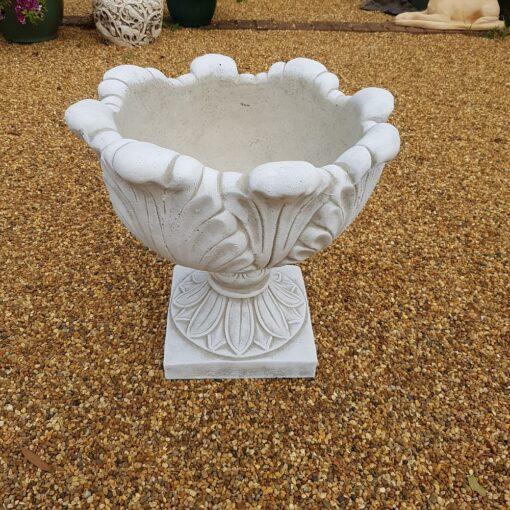 Concrete Tulip Design Planter White Finish