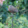 Robin On Tall Spike
