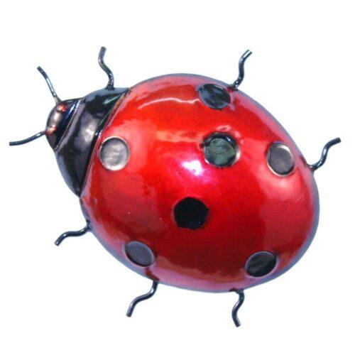 Red Ladybird